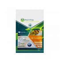 Phyto Extractions - Assorted Flavours