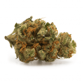 Ocean View - Cankush Budget Bud - $110 OZ