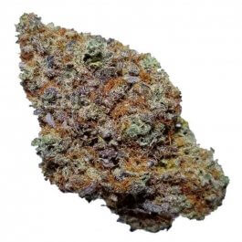 Black Berry Kush